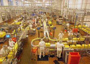 Deratizare, dezinsectie Industrie alimentara