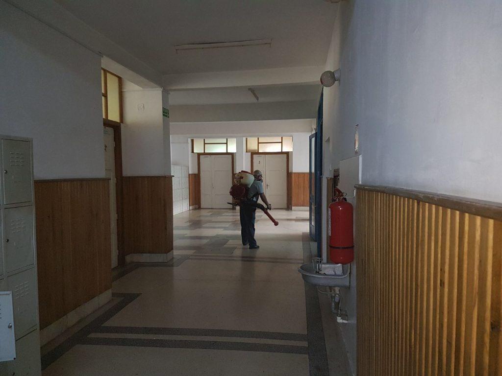Procedura de deratizare si dezinsectie la Liceul Onisifor Ghibu din Oradea