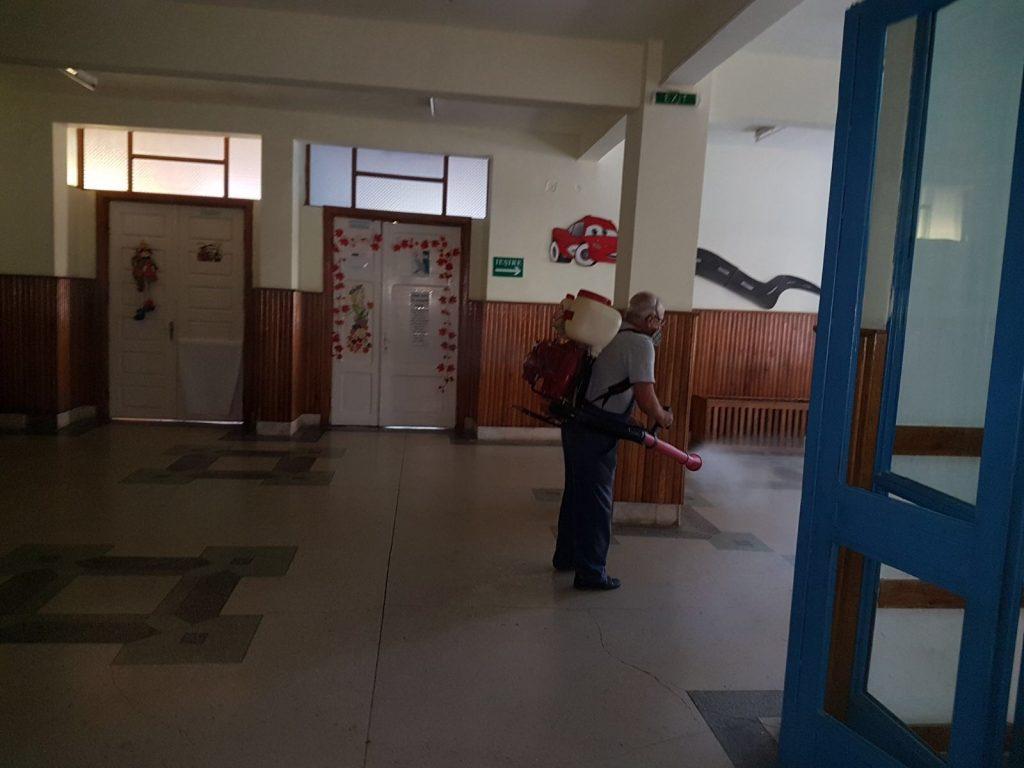 Servicii de deratizare si dezinsectie la Liceul Onisifor Ghibu din Oradea