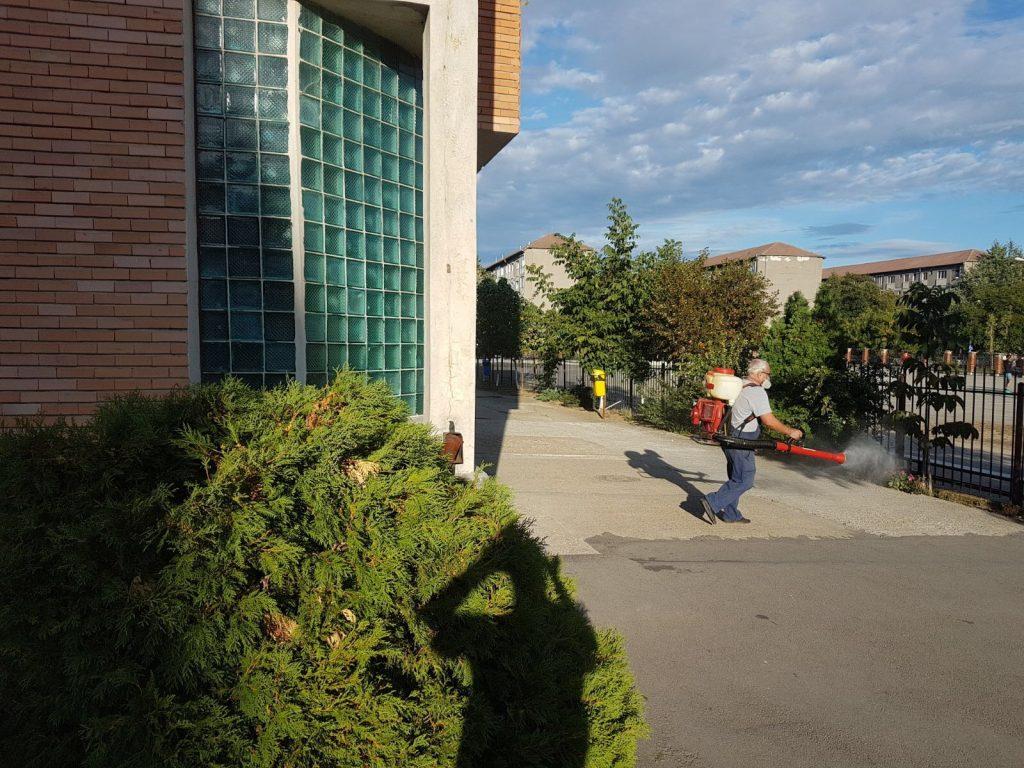 Lucrari de deratizare si dezinsectie la Liceul Onisifor Ghibu din Oradea