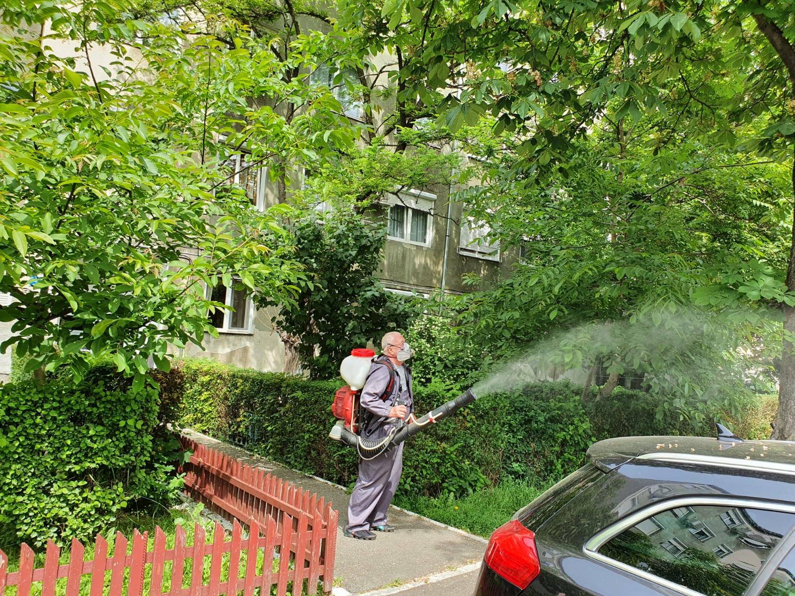 Dezinsectie Oradea